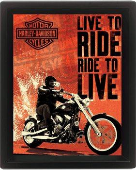 HARLEY DAVIDSON - live Poster 3D înrămat