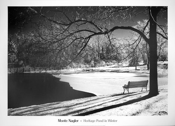 Heritage Pond in Winter Reproducere
