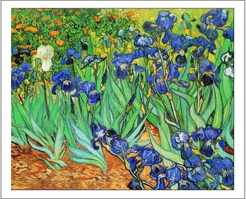 Irises, 1889 Reproducere