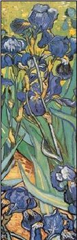 Irises, 1889 (part.) Reproducere