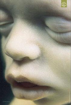 Rammstein - Mutter Poster