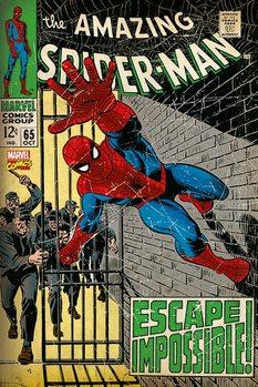 Spiderman - Escape Impossible Poster