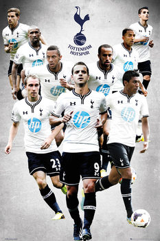 Tottenham Hotspur FC - Players 13/14 Poster