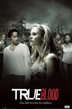 TRUE BLOOD - montage Poster