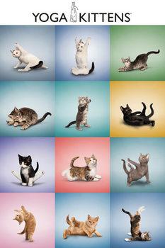 Yoga - Kittens Grid Poster