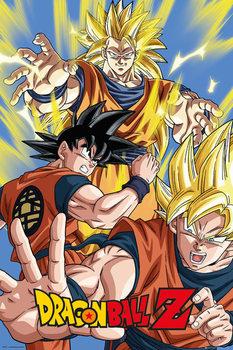 Poster Dragon Ball Z - Goku