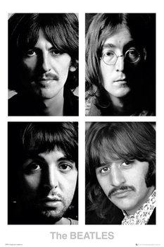 Poster The Beatles - White album
