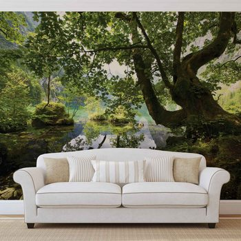 Arbre Lac Nature Poster Mural XXL