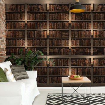 Bookshelves Poster Mural XXL