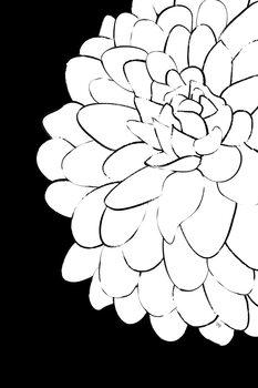 ChrysanthemumONEbySHP Poster Mural XXL