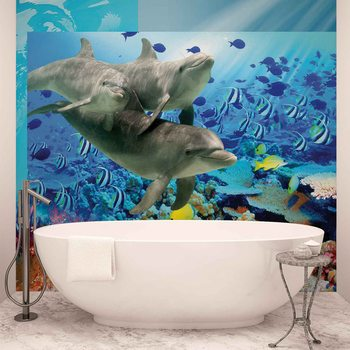 Dauphins Poissons tropicaux Poster Mural XXL