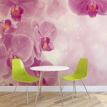 Fleurs Orchidées Poster Mural XXL