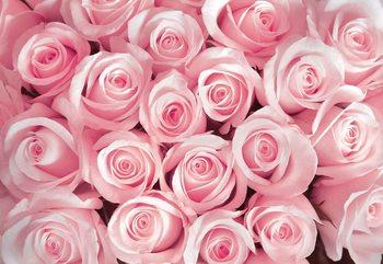 Fleurs Roses Poster Mural XXL