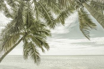 FLORIDA Vintage Oceanview Poster Mural XXL