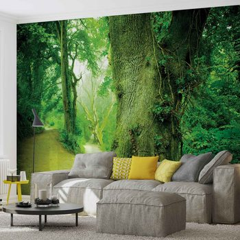 Forêt Nature Arbres Poster Mural XXL