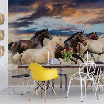 Galloping Horses Poster Mural XXL