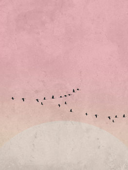 moonbird5 Poster Mural XXL
