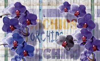 Orchidées Fleurs planches en bois Poster Mural XXL