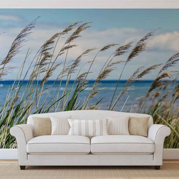 Plage Mer Sable Nature Poster Mural XXL