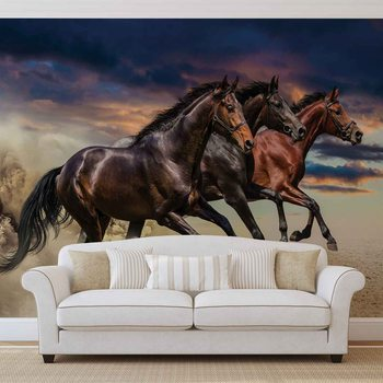 Poney Cheval Poster Mural XXL