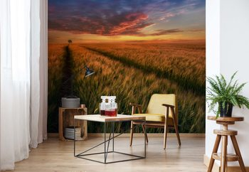 Somewhere At Sunset Poster Mural XXL