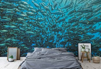 Splitted School Of Jackfish Poster Mural XXL