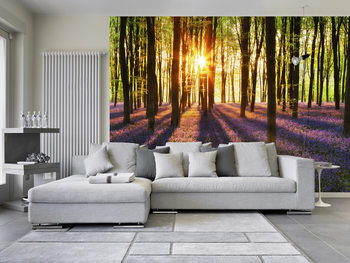 WOODLAND AT DAWN Poster Mural XXL