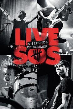 Плакат 5 Seconds of Summer - Live