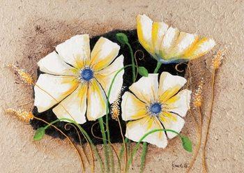 Anemone in frame Kunstdruck