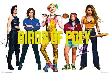 Плакат Birds Of Prey - Group