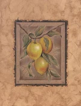 Citron Fructus Kunstdruck