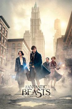 Poster Fantastiska vidunder och var man hittar dem - New York Streets