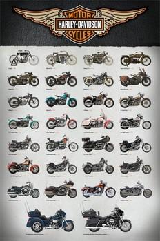 Poster Harley Davidson - evolution