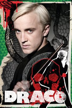 Póster Harry Potter - Draco