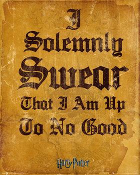 Poster Harry Potter - I Solemnly Swear