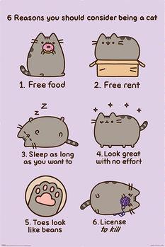 Плакат Pusheen - Reasons to be a Cat
