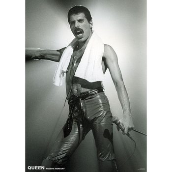 Плакат Queen (Freddie Mercury) - Live On Stage