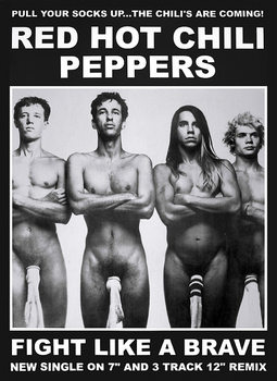 Poster Red hot chili peppers - fight like a brave