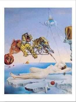 Poster Réve