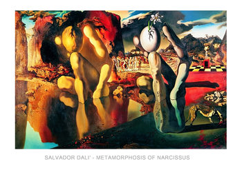 Konsttryck  Salvador Dali - Metamorphosis Of Narcissus