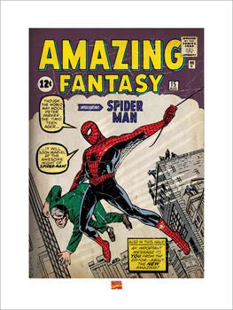 Konsttryck Spider Man