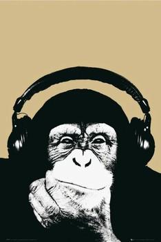 Плакат Steez - monkey