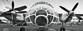 Plane - Black and White Print på glas