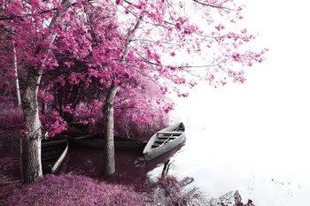 Quadri in vetro Pink World - Blossom Tree with Boat 2