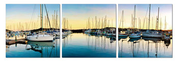 Quadro Morning in harbor