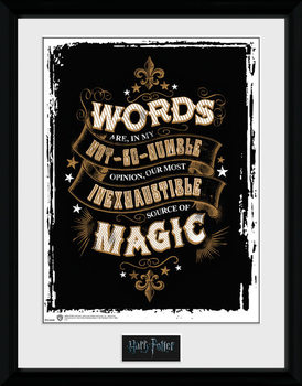 Harry Potter - Words rám s plexisklom