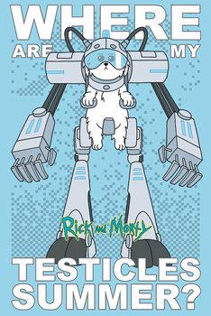 Αφίσα  Rick and Morty - Where Are My Testicles