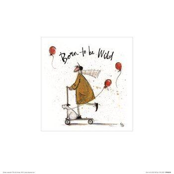 Sam Toft - Born to be Wild Festmény reprodukció
