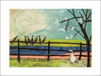 Sam Toft - Doris and the Birdies Festmény reprodukció