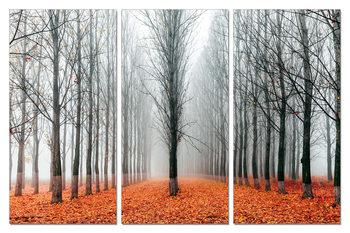 Autumn Alley Schilderij
